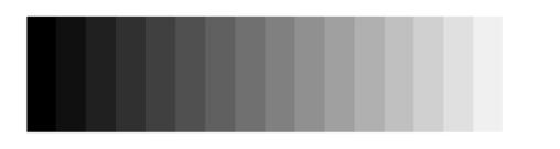 86257687.aIzS3Y17.GreyScale