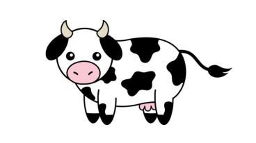 moo_cow-1518897