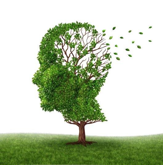 Alzheimer2.jpg